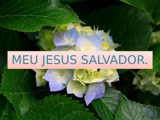 MEU JESUS SALVADOR.pptx