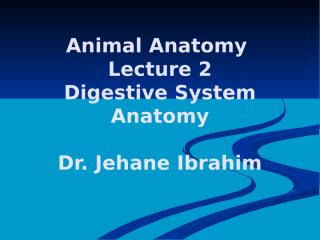 Anatomy_Lecture_002.pptx