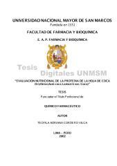 tesis  coca.pdf