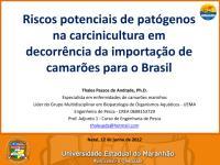 Thales Passos de Andrade.pdf