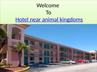 Hotel near animal kingdoms.pptx